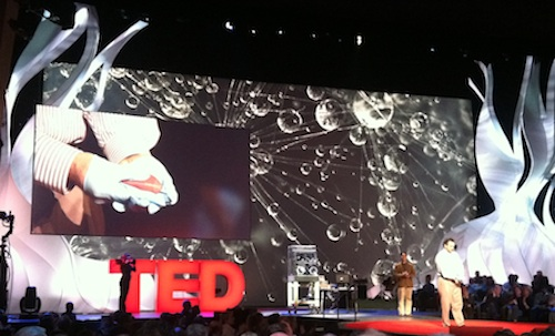"Post image for Chickens into dinosaurs, ""printing"" live organs, self-driving cars, and other miracles from TED"
